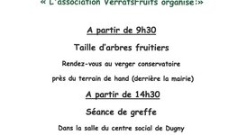 TAILLE D'ARBRES FRUITIERS
